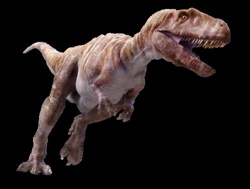 九州・熊本に肉食恐竜がいた!?...