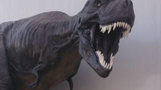 九州・熊本に肉食恐竜がいた!?~現実(ミフネリュウ)対 虚構(ゴジラ)?