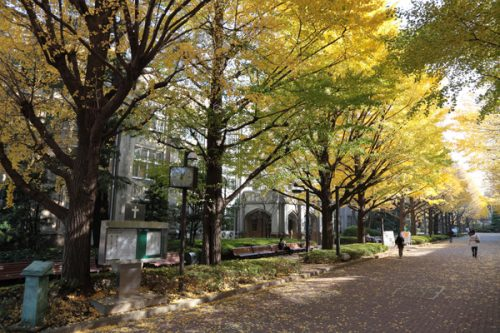 autumn_a_012