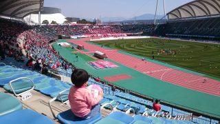 「もしも娘がなでしこジャパンを目指すと言い出したら・・・」くまちゃん・R子の子育て日記(74日目)