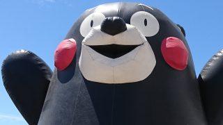熊本に野生のクマはいませんよ~♡ 九州のツキノワグマはすでに絶滅?
