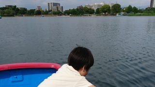 「How much? 江津湖(熊本市)ボート遊びのお値段はいくら? ※2017年5月現在」くまちゃん・R子の子育て日記(88日目)