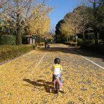 「祝!自転車のペダルをやっと漕げた!」「『茅ヶ崎物語』inTOHOシネマズはません(熊本)」くまとR子の子育て日記(126日目)