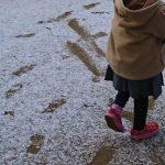 「インフルエンザのまとめ」くまとR子の子育て日記(137日目)