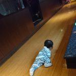 「ちょっとした会食にも、ゆったりとした空間で熊本を食す焼肉店~米・肉・水・菜・豆『土房(とぼう)』(熊本市)」くまとR子の子育て日記(139日目)