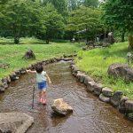 「【水遊び】大津町の穴場、矢護川公園|まるで諸星大二郎のマンガに出てきそうな初生(うぶ)神社」くまとR子の子育て日記(183日目)
