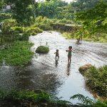 「【江津湖】1歳児、初めての水遊び|芭蕉苑(ばしょうえん)の湧水地にて」くまとR子の子育て日記(189日目)