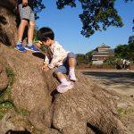 「【雑記】久しぶりに熊本城の天守閣を拝む『TKUの日2018』|鼻ぐり井手公園で鼻ぐり(水を通すトンネル状の溝穴)を初めて見学|10月の花火」くまとR子の子育て日記(223日目)